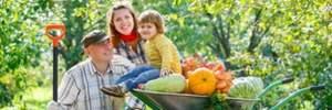 Принят закон о легализации семейных ферм