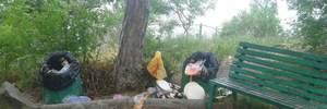 Мальовниче місце окупованого Криму перетворили на смітник: промовисті фото