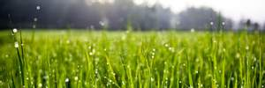 Прогноз погоди на 19 червня: короткочасні грозові дощі на Заході, сухо та сонячно на Сході