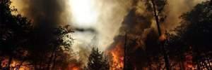 В Крыму ввели чрезвычайное положение из-за засухи, – СМИ