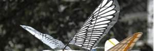 У Китаї з'явилися військові дрони, що схожі на голубів