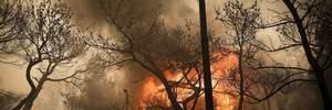 У Греції спалахнула масштабна лісова пожежа: вогонь швидко поширюється до населених пунктів