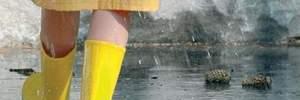 Прогноз погоди на 17 серпня: спека до +36, але частину України накриють грози