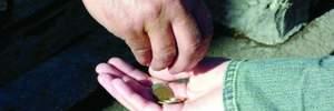 На Луганщине женщина продала дочь за 2 тысячи гривен