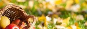 Яблучний Спас: як обрати яблука для освячення