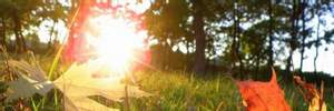 Прогноз погоды на 20 сентября: летнее тепло и солнце по всей территории Украины