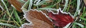 В Україні очікуються заморозки: температура впаде до -5 градусів