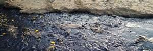 В оккупированном Крыму завод выбрасывает отходы прямо в море: в сети появились фото