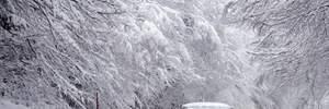 Прогноз погоди на 14 листопада: дощ, сніг та ожеледиця