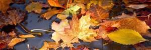 Прогноз погоды на 17 ноября: солнечно, холодно, а непогода отступает на восток