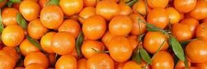 Скільки мандаринів можна з'їдати за день без шкоди для здоров'я