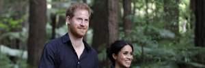 Под руководством Меган Маркл: принц Гарри признался, каким занятием его увлекла жена