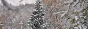Прогноз погоди на 18 січня: останній теплий день перед йорданськими морозами