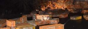 Під Миколаєвом перекинулася фура з курчатами: фото
