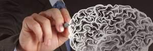 Умственные способности человека зависят от жиров в тканях мозга: исследование