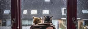 Прогноз погоди на 19 березня: на Україну знову суне холоднеча