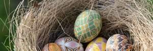 Як пофарбувати яйця зеленкою, куркумою і в горошок: цікаві ідеї у фото