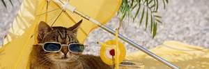 Прогноз погоди на 25 квітня: в Україні буде по-літньому тепло