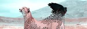 Дизайнер уявив трансформацію тварин, коли на них ніхто не дивиться: сюрреалістичні фото