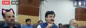 Когда SMMщик не убрал фильтр: в Пакистане заседание правительства провели в кошачьих масках–фото