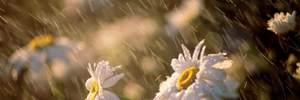 Прогноз погоди на 21 червня: буде дуже спекотно, але Захід омиють дощі