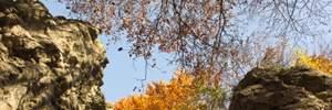 Прогноз погоды на 17 октября: бабье лето на полную царит в Украине