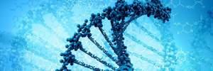 Нашли метод, который может исправить 89% генных мутаций