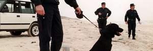 Кокаїновий пляж: у Франції знайшли 760 кілограмів наркотику