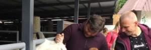 Може відповісти за козла: проти Богдана закликають відкрити справу