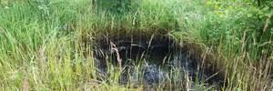 На Львовщине произошла утечка нефти: фото