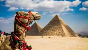 МЗС не рекомендує українцям відвідувати Єгипет: названо причину