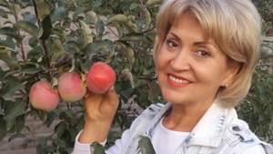 Суд обрав запобіжний захід тещі Притули Лілії Сопельник, яка переїхала дитину з матір'ю