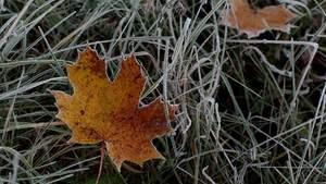 В Украину идут заморозки: где будет холоднее всего