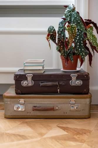 Обіграйте валізу в інтер'єрі