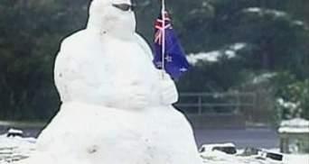 Во многих городах Новой Зеландии впервые за 33 года выпал снег