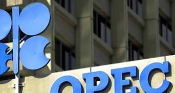 ОПЕК знизила прогноз зростання світового споживання нафти