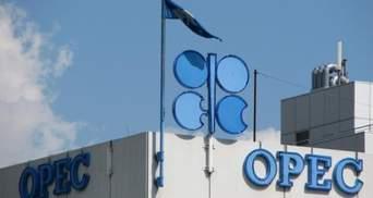 ОПЕК: Попит на нафту в світі знизиться