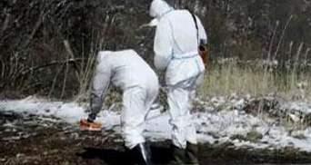 Японія починає очищати свою територію від радіації