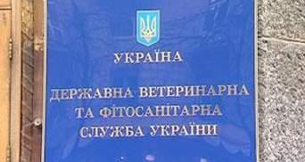 Держветслужба не реагуватиме на заяви головного санітарного лікаря Росії Оніщенка