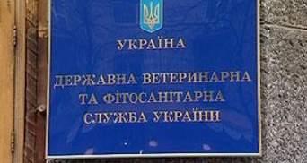 Київ не відповідатиме на образи російського санітара