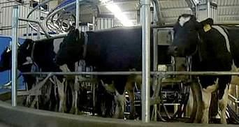 В Австралії почала функціонувати роботизована ферма