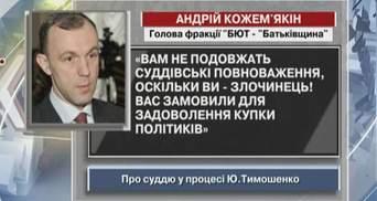 Кожемякин назвал судью в процессе Тимошенко преступником