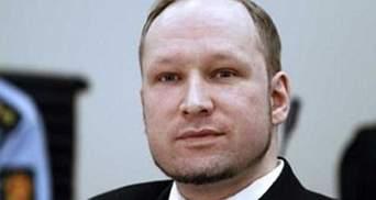 Прем'єр Норвегії заявив, що Брейвік не зміг змінити країну