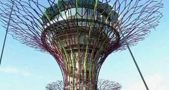 У Сінгапурі створили хай-тек сад з унікальними штучними деревами