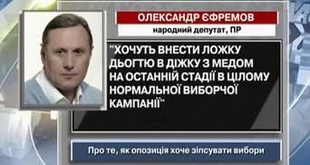 Єфремов: Опозиція вносить ложку дьогтю в виборчу діжку з медом