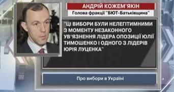 Кожем'якін: Вибори нелегітимні ще починаючи від ув'язнення Луценка