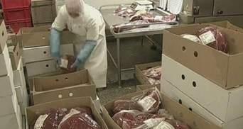 Мясной скандал набирает обороты - в Европе продано более 750 тонн конины