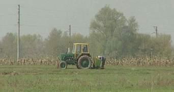 ЄБРР має намір інвестувати 300 млн євро в сільське господарство
