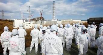 Пацюк ледь не спровокував нову аварію на Фукусімі-1