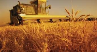 Посол України в США вважає Україну потенційним аграрним лідером світу